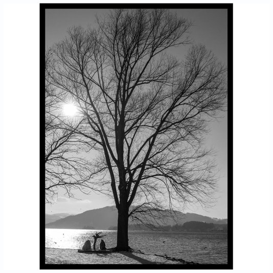 Quadro com Moldura Preta Paisagem Árvore 50x70cm