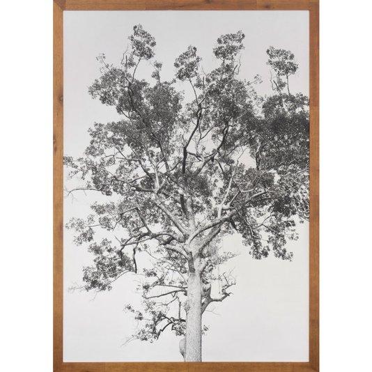 Quadro com Moldura Rústica Árvore em Preto e Branco 70x100 Cm
