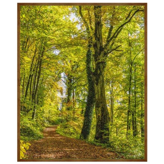 Quadro com Moldura Rústica Paisagem Floresta 90x110cm