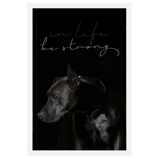 Quadro de Cachorro com Moldura Branca e Frase Na Vida Seja Forte 40x60cm