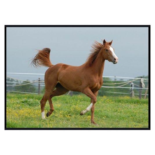 Quadro Decorativo Cavalo Marrom em Paisagem de Campo 140x100cm