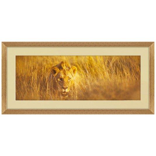 Quadro Decorativo Leão Africano com Moldura Rústica 80x40cm