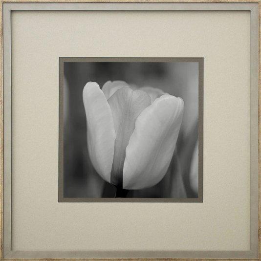 Quadro Decorativo Floral Tulipa em Preto e Branco 50x50cm