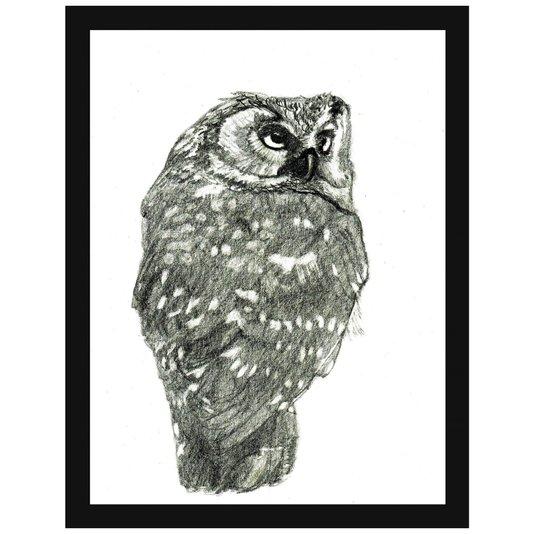 Quadro Decorativo Ilustração Riscos de Lápis Coruja 30x40cm