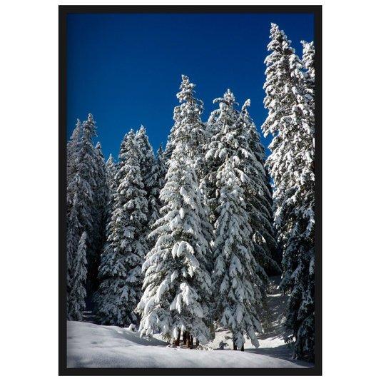 Quadro Decorativo Paisagem Árvores Cobertas de Neve 70x100cm