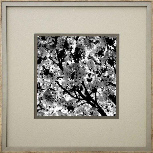 Quadro Decorativo Paisagem Flor de Cerejeira em Preto e Branco 50x50cm
