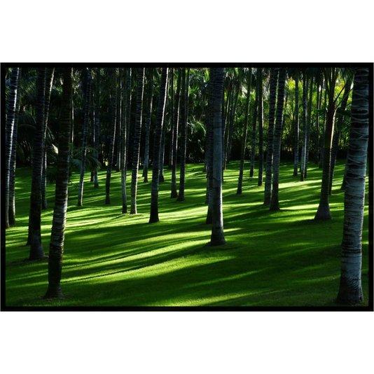 Quadro Decorativo Paisagem Floresta Árvores de Palma 100x70cm