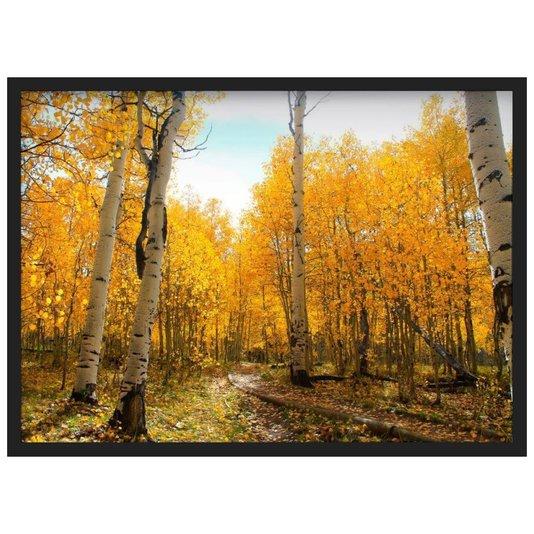 Quadro Decorativo Paisagem Outono Árvores com Folhas Amarelas 70x50cm