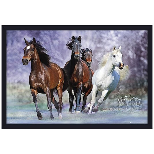 Quadro Decorativo Poster Cavalos s/ Vidro 90x60cm