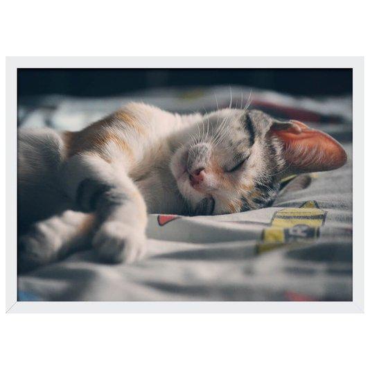 Quadro Poster com Moldura e Vidro PET Gato Dormindo 33x23 cm