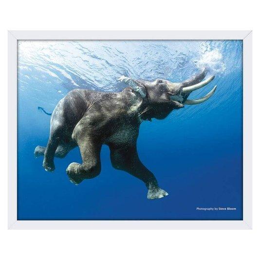 Quadro Decorativo Poster com Moldura Elefante 50x40cm