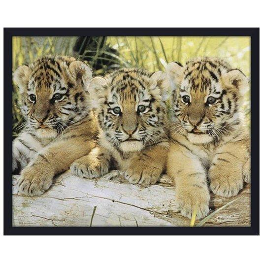 Quadro Decorativo Poster com Moldura Tigres Filhotes 50x40cm