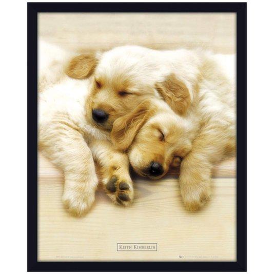 Quadro Decorativo Poster Filhotes de Labrador s/ Vidro 40x50cm