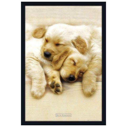 Quadro Decorativo Poster Filhotes Labrador 60x90cm