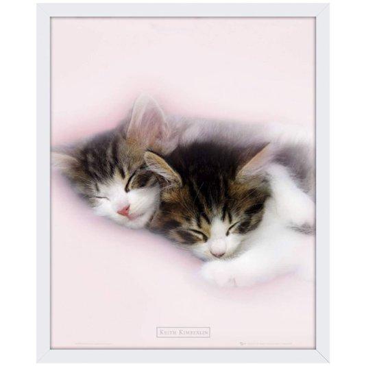 Quadro Decorativo Poster Gatinhos Dormindo s/ Vidro 40x50cm