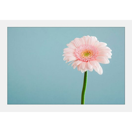 Quadro Decorativo Imagem Minimalista Flor Rosa 30x20cm