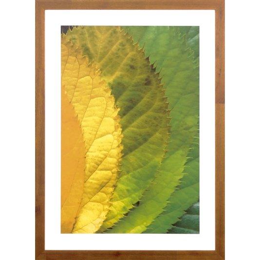 Quadro Decorativo Rústico Arte Folhas Verdes 50x70 cm