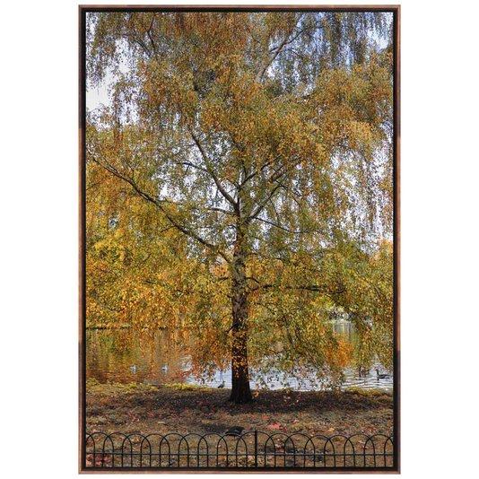 Quadro em Tela Canvas Natureza Árvore por Dorival Moreira 100x150cm