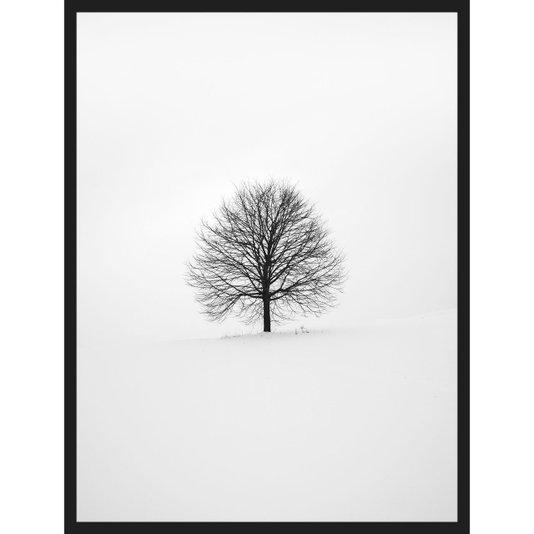 Quadro Escandinavo Natureza Inverno Árvore 60x80cm