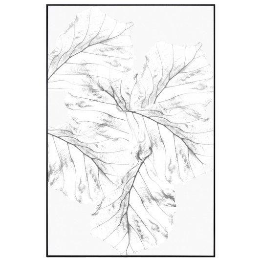 Quadro Floral em Preto e Branco Folhas Efeito Raio-X 60x90cm