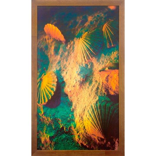 Quadro Rústico Conchas do Mar Coloridas 40x70 cm
