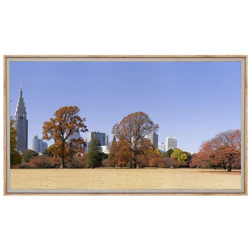 Quadro Decorativo Grande Paisagem Parque com Cidade ao Fundo 150x80cm