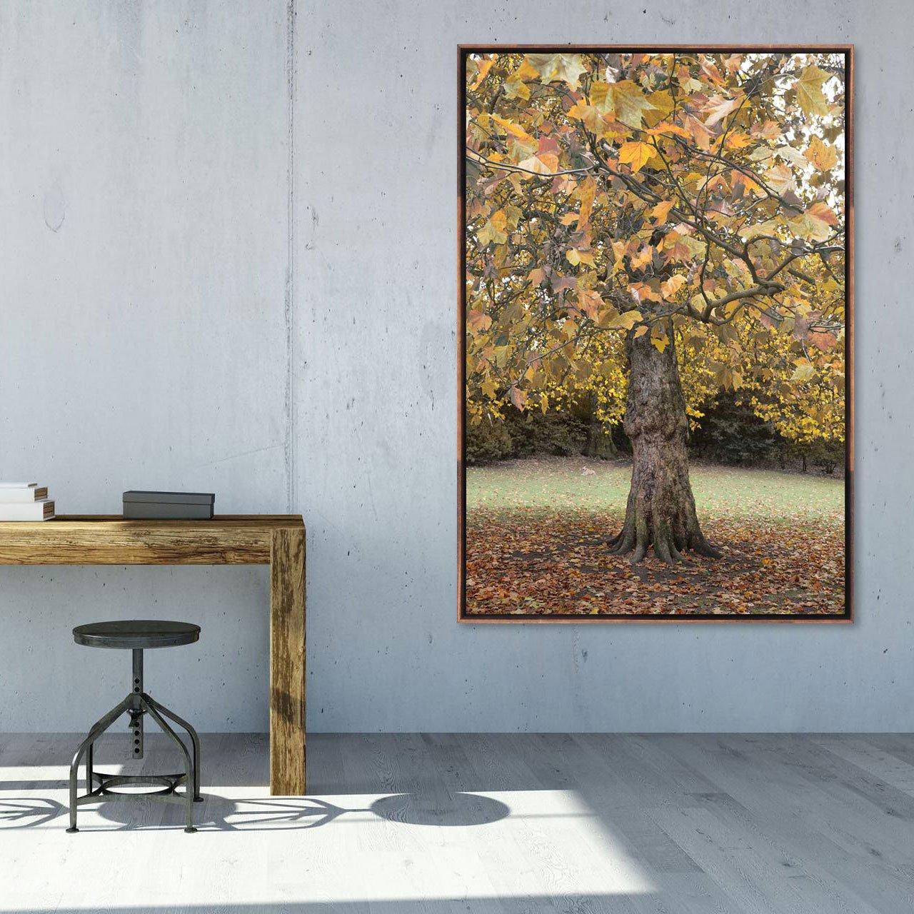 Quadro grande com moldura flutuante, tela canvas natureza.