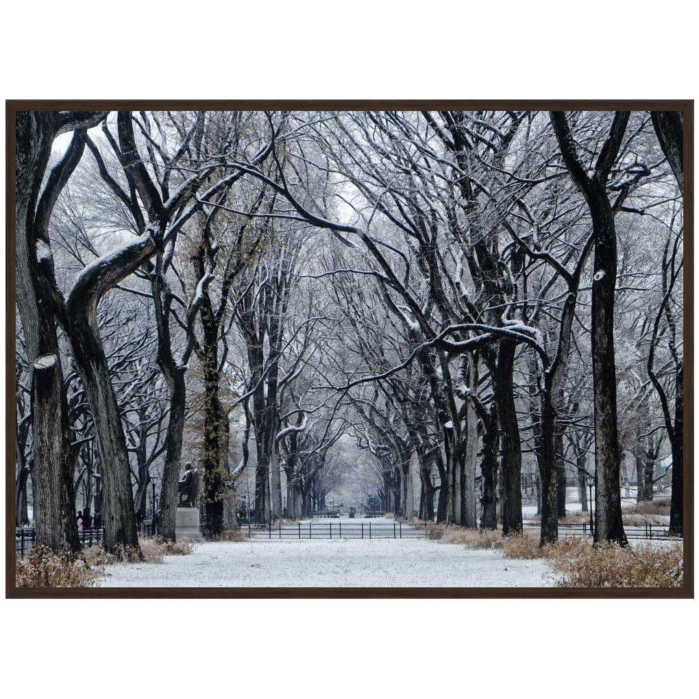Quadro Paisagem Central Park NY por Dorival Moreira 140x100 cm
