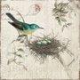 Quadro Tela Decorativa Pássaro e Seu Ninho 50x50cm