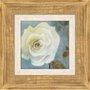 Quadro Decorativo de Flor Branca Rústico 60x60cm